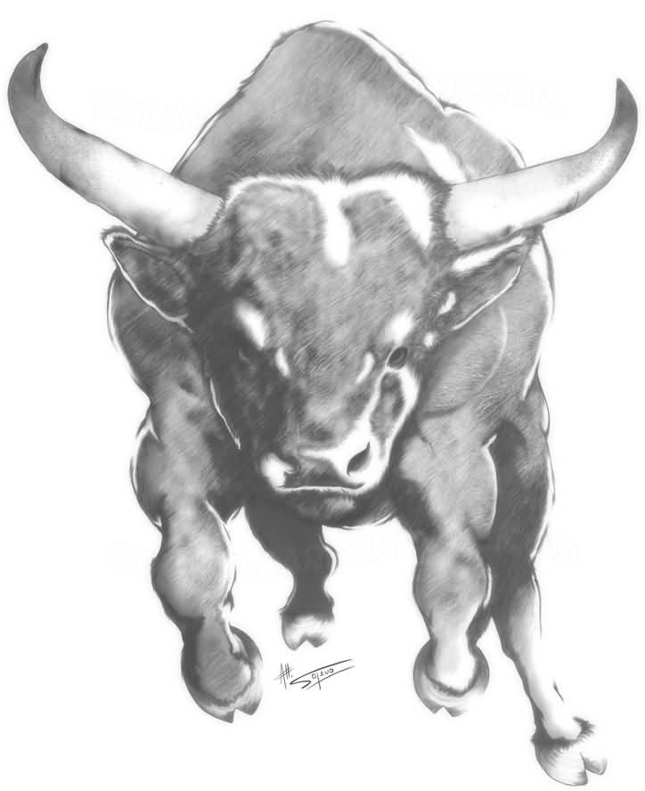 bull tattoo images amp designs
