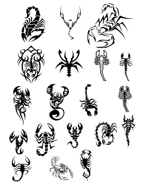 Scorpion Tattoos Design Set