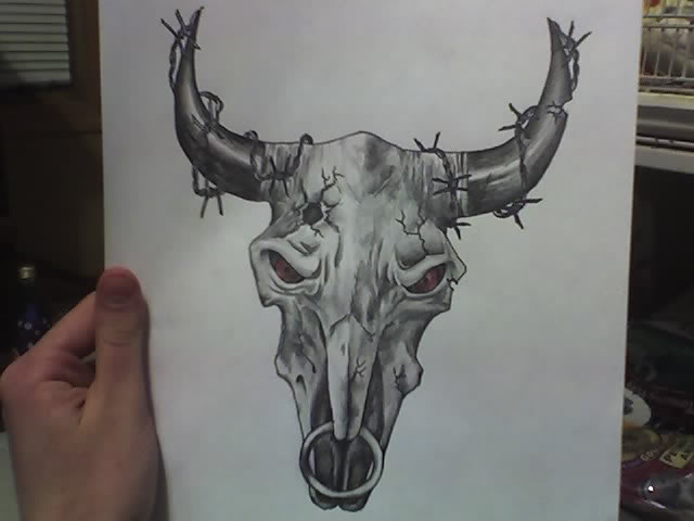 Steer Bull Skull Tattoo Drawing