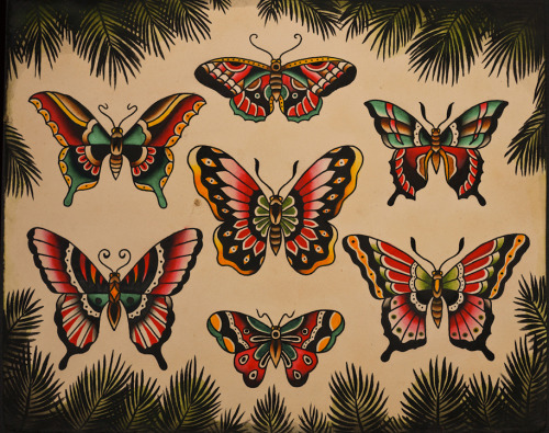 Traditional Butterfly Tattoos Design Set