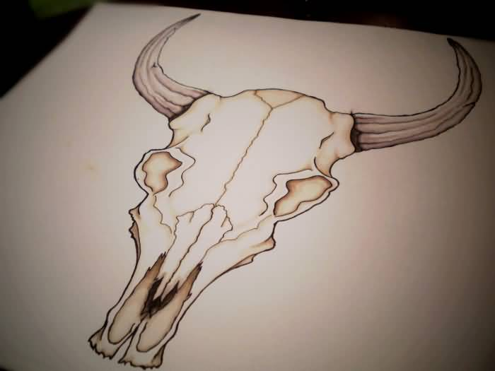 Zodiac Bull Skull Tattoo Drawing By WingsDurus