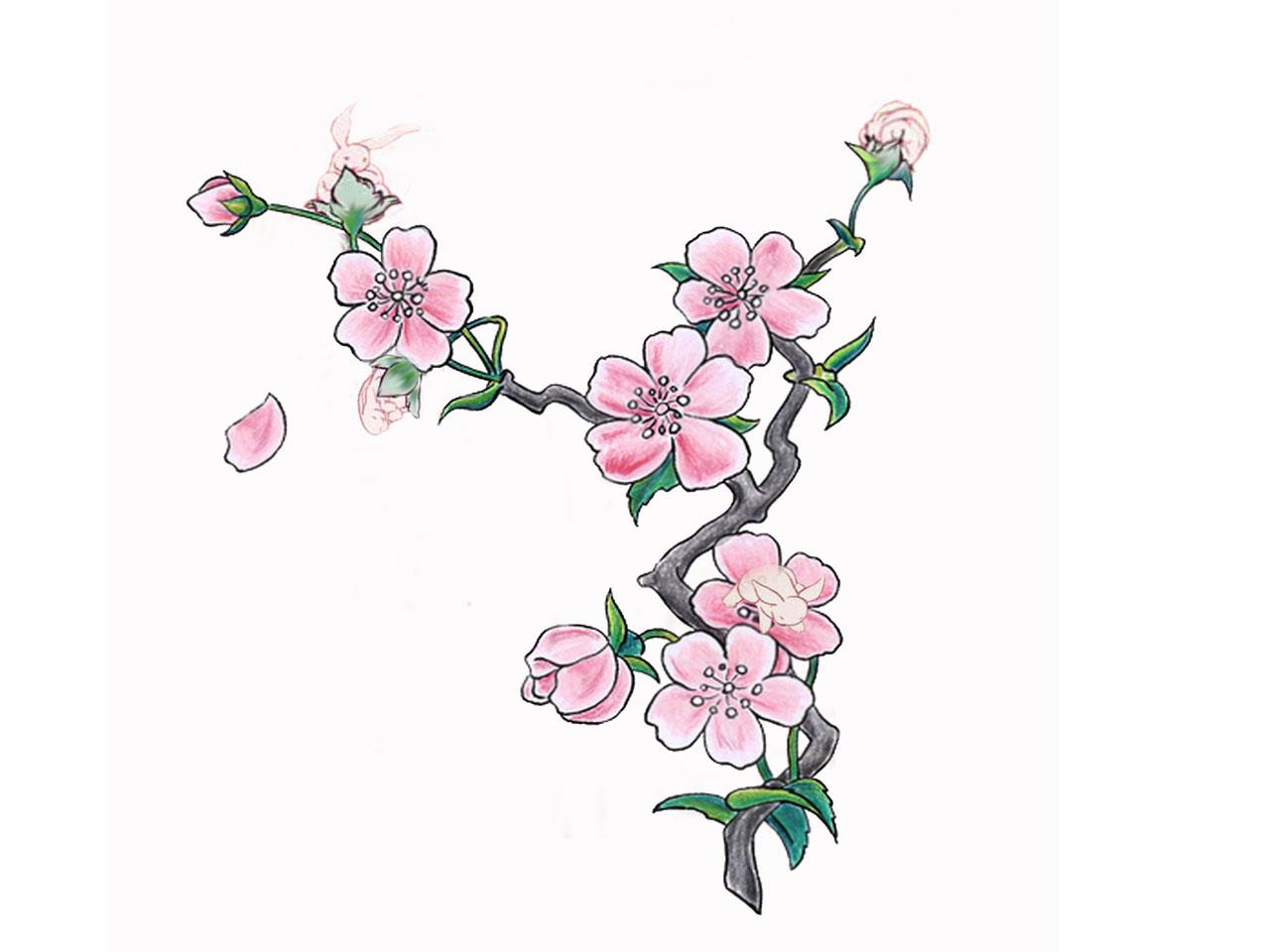 Simple Cherry Blossom Tattoo Stencil | 1280 x 960 jpeg 87kB