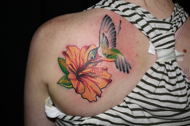 Hibiscus Flower And Hummingbird Tattoo On Back Shoulder