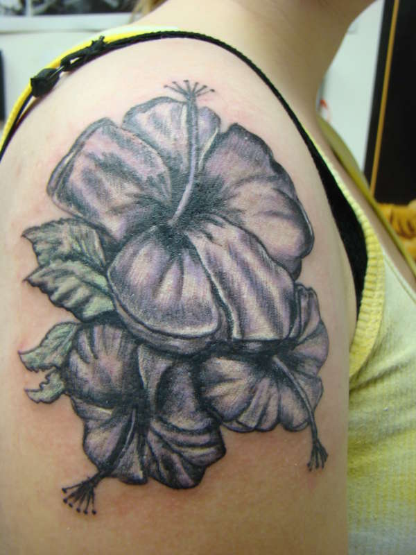 Nice Black Hibiscus Flowers Tattoo On Right Shoulder
