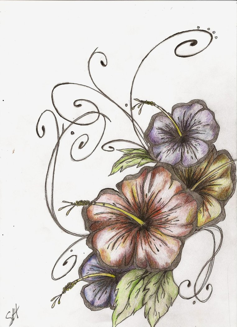 Hibiscus Tattoo Drawing: Hibiscus Tattoo Images & Designs