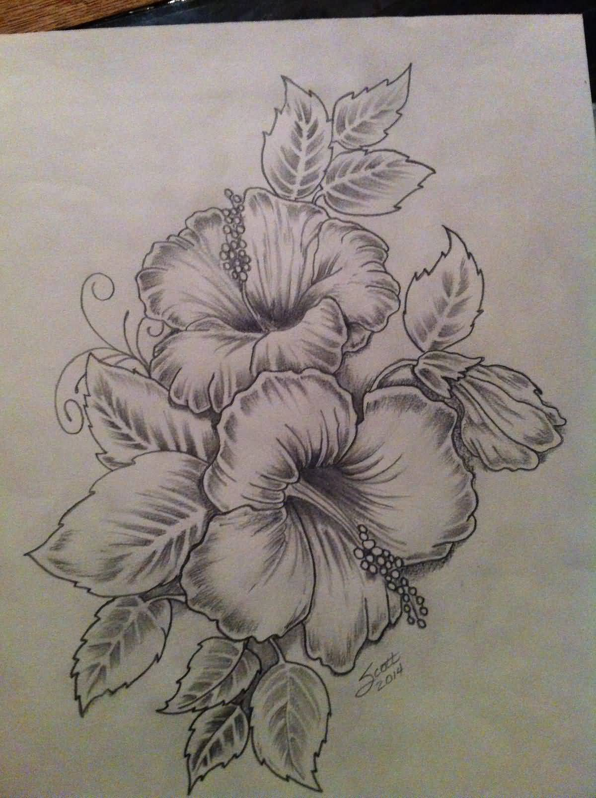 Nice Hibiscus Flowers Tattoo Drawing