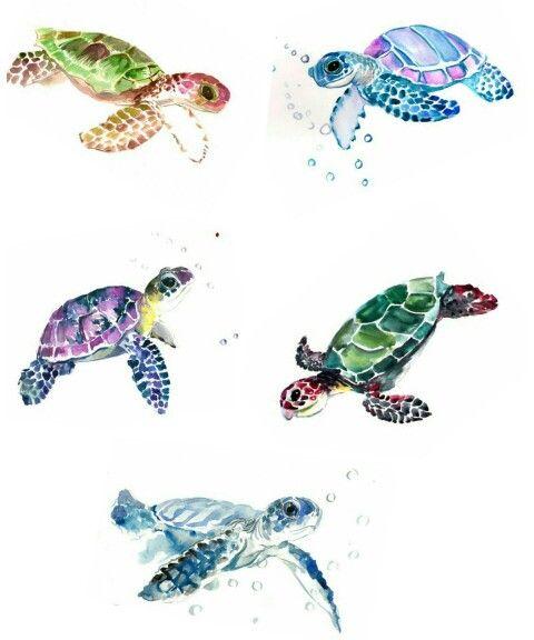 turtle tattoo images amp designs