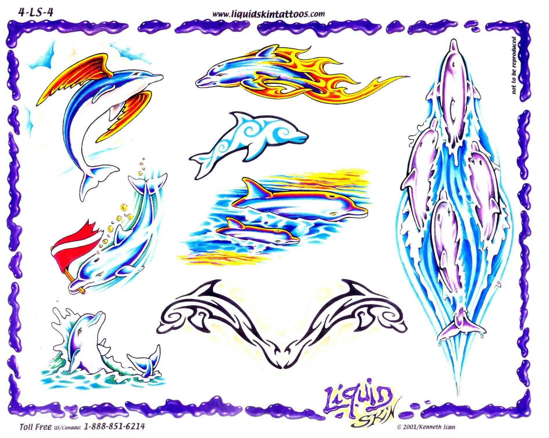 Dolphin Tattoo Images & Designs
