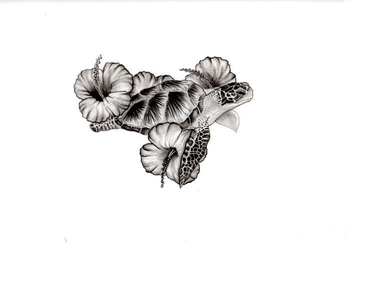 Turtle Hibiscus Tattoo Designs