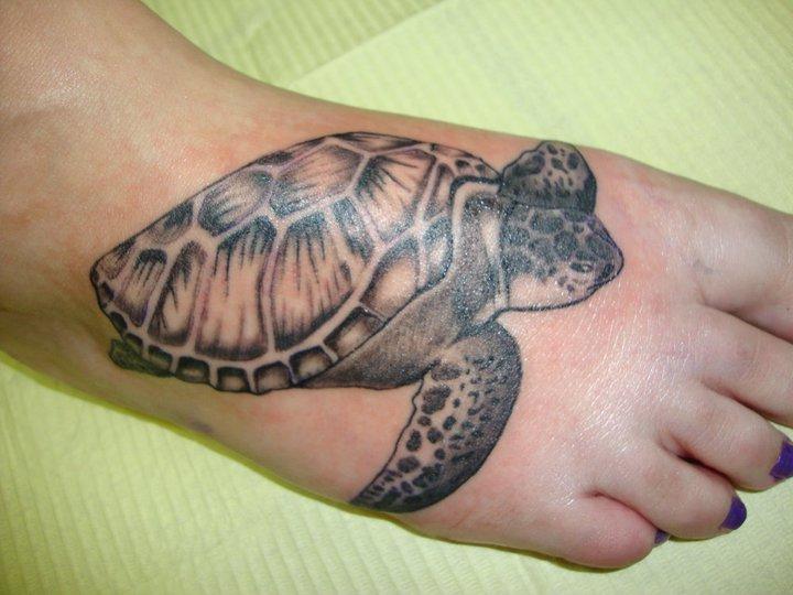 turtle tattoo cartoon
