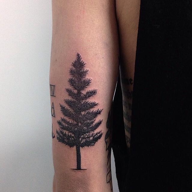Tree Tattoo Images & Designs