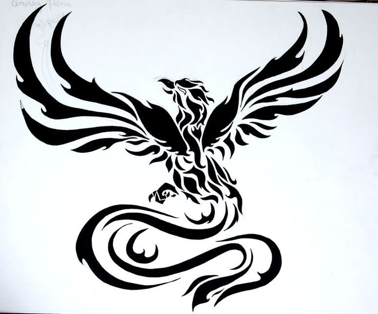 Phoenix Tattoo Images & Designs