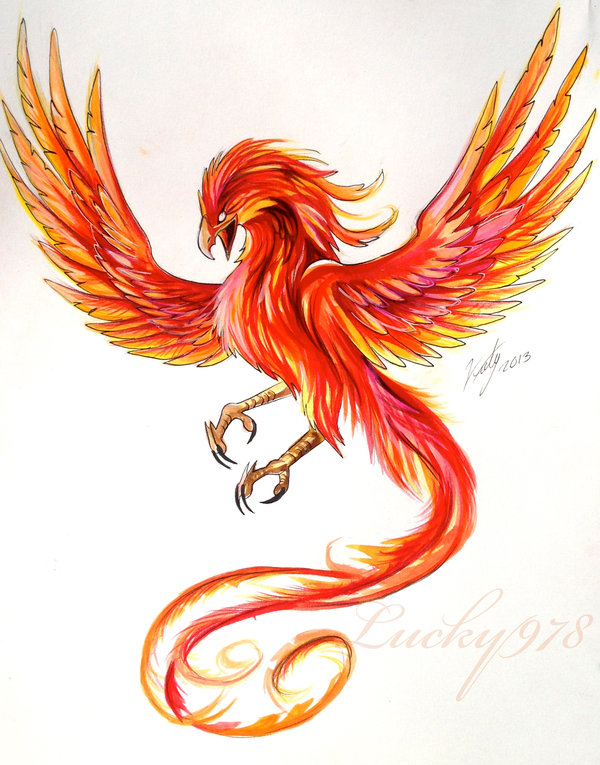 Colored Phoenix Tattoo Design By Lucky978