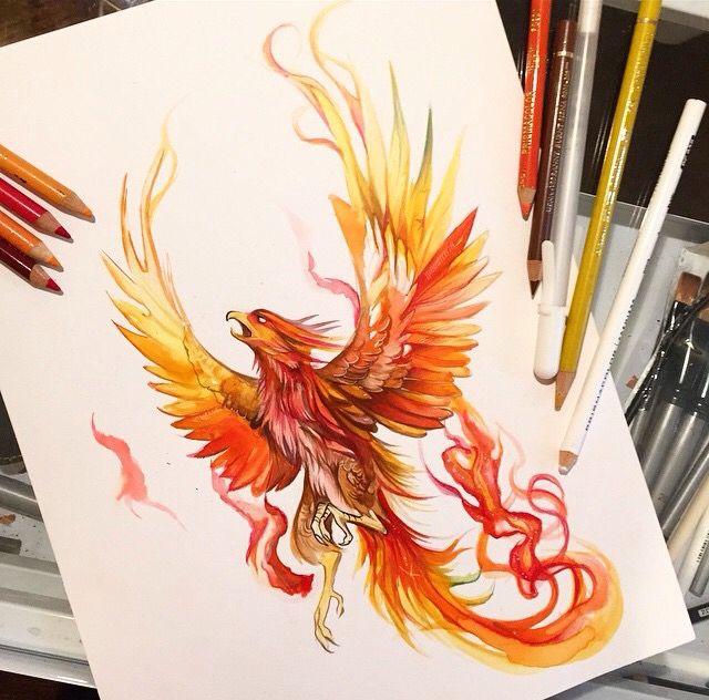phoenix tattoo design stencil. Black Bedroom Furniture Sets. Home Design Ideas