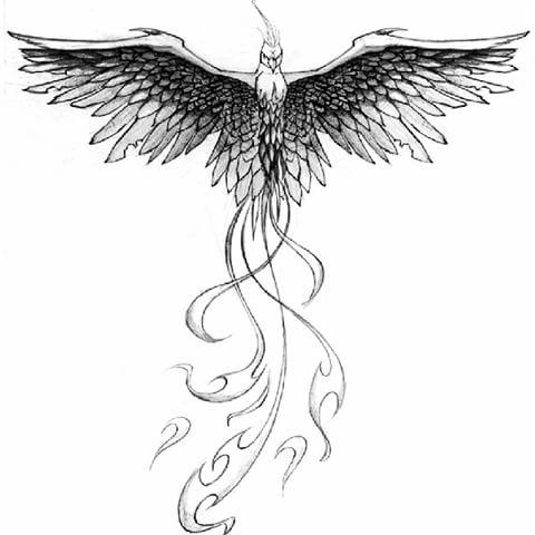 Man Chest Phoenix Tattoo Idea