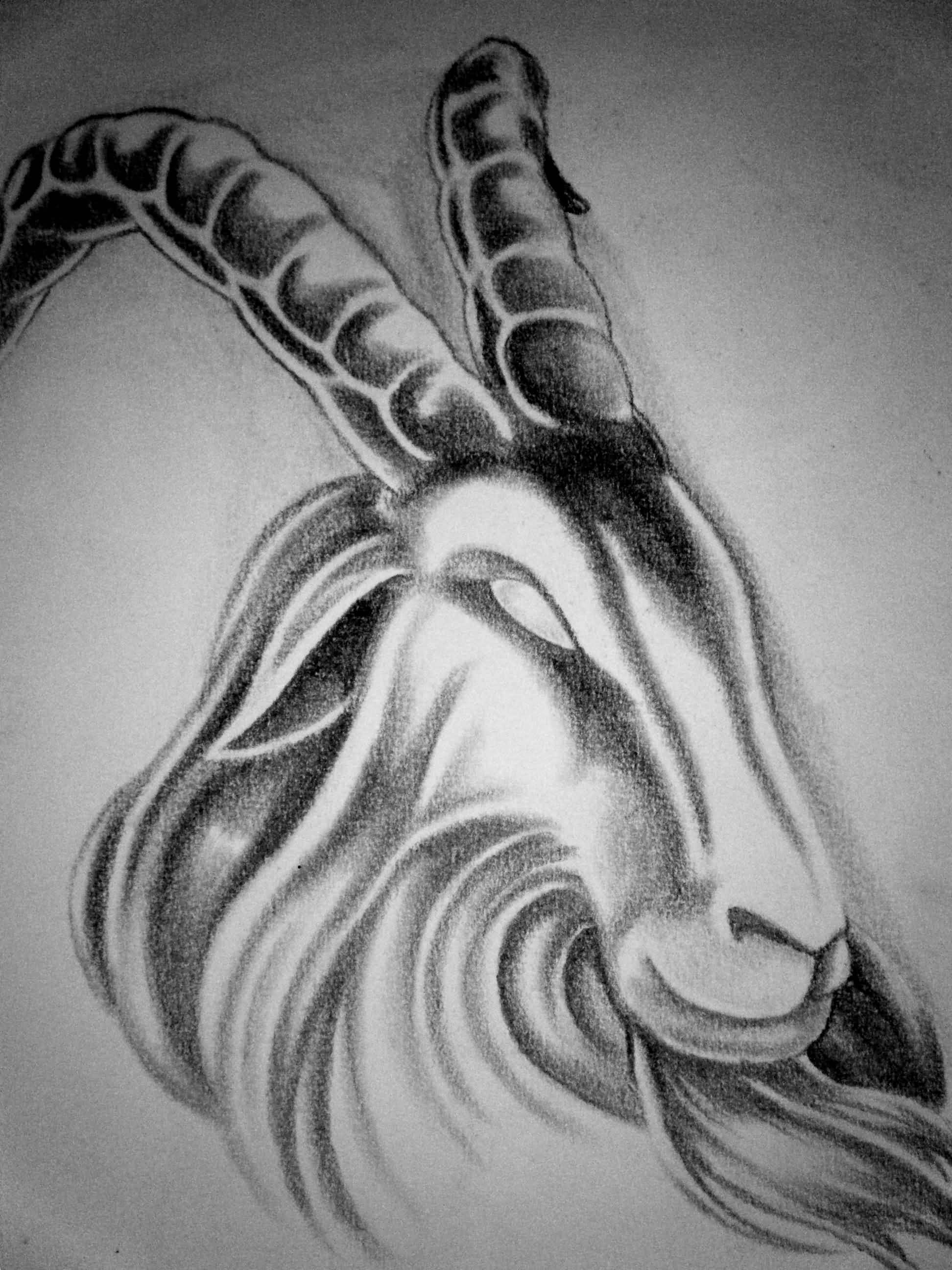 capricorn tattoo images designs. Black Bedroom Furniture Sets. Home Design Ideas