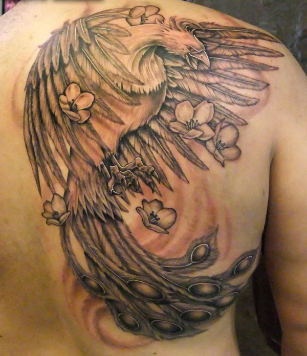 Phoenix Tattoo On Right Back Shoulder