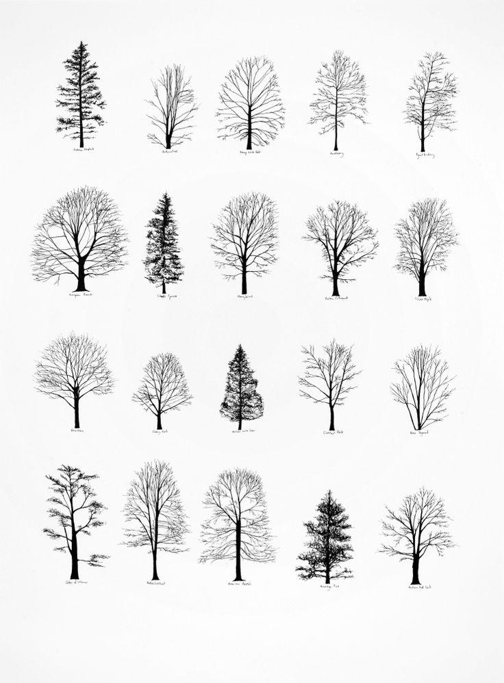 Small Tree Tattoos Designs
