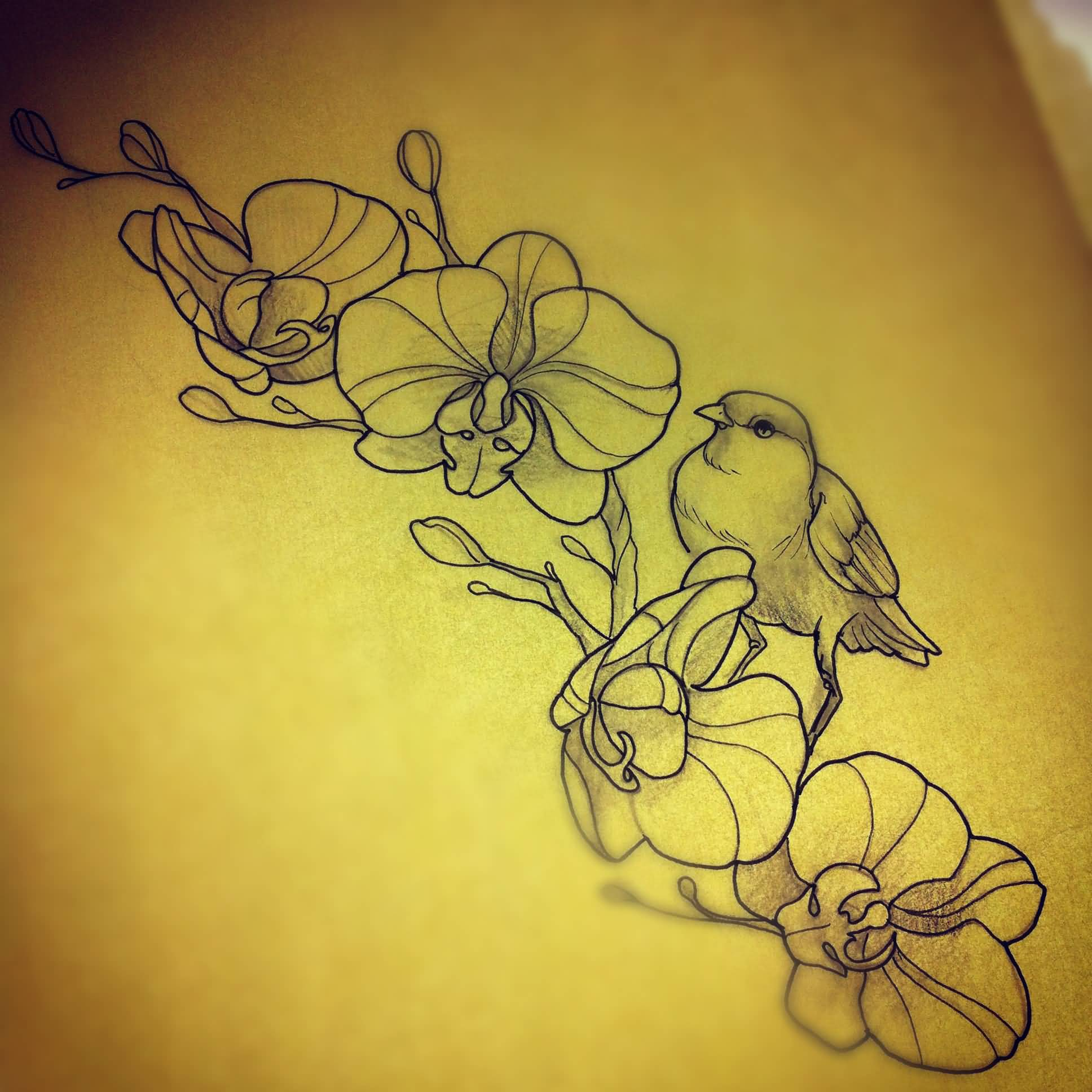 Sparrow And Orchid Tattoos Design