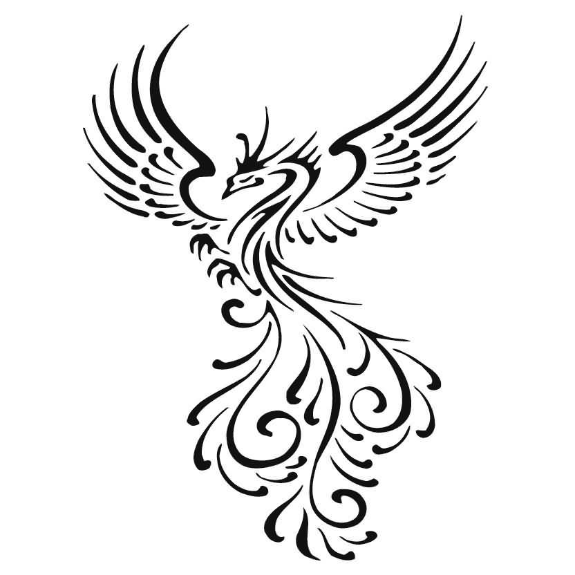 tribal phoenix tattoo design rh tattoostime com tribal phoenix tattoo images tribal phoenix tattoo designs color