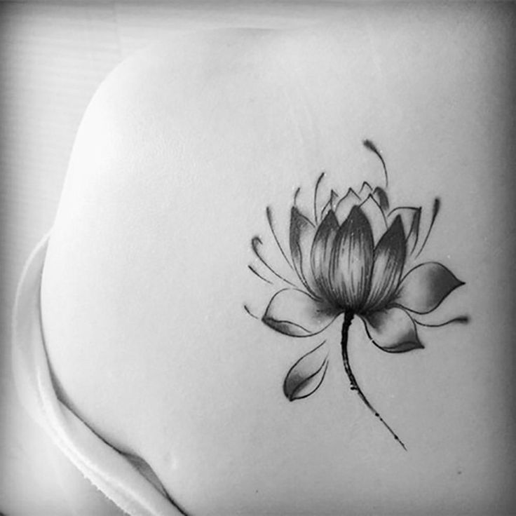 Black And Grey Lotus Tattoo On Front Shoulder