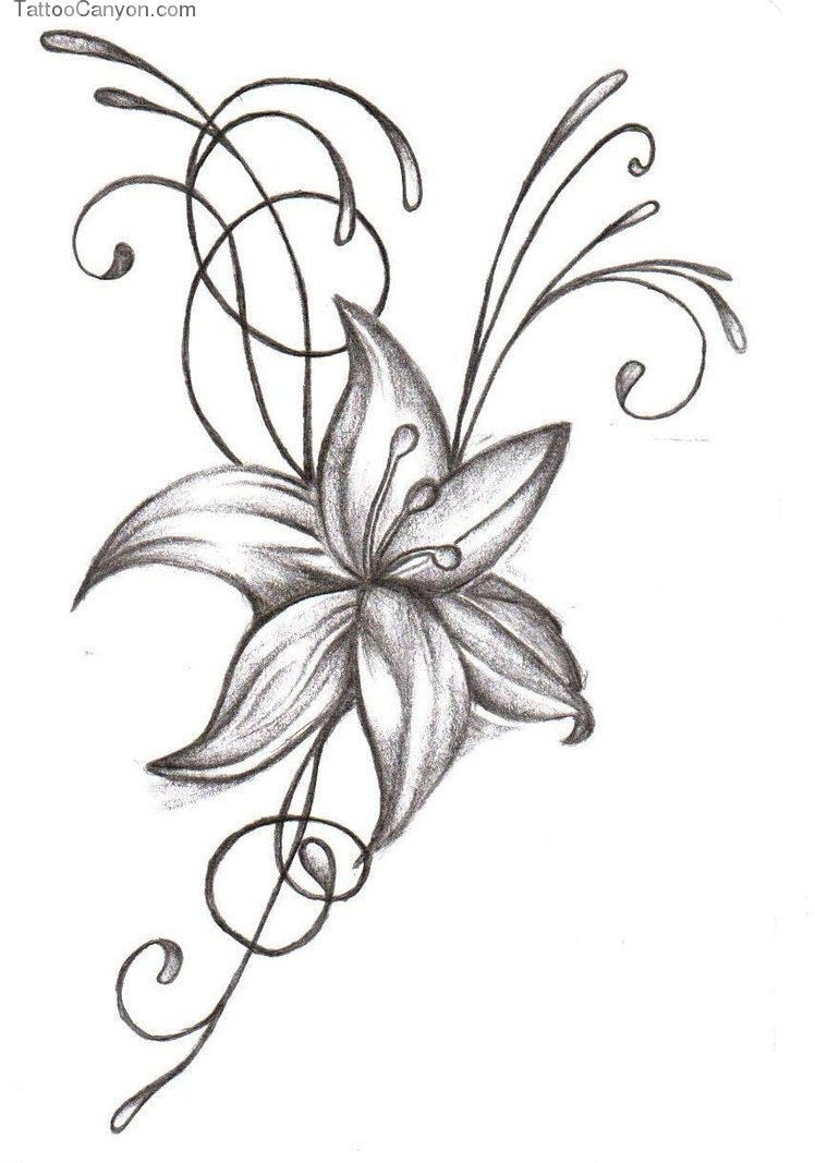 Lily flower tattoo design grey and white lily flower tattoo design izmirmasajfo