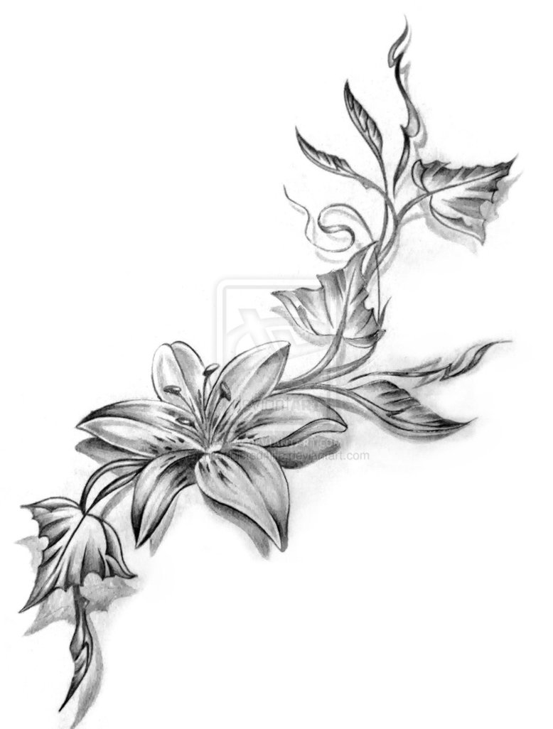 Stars and lily flower tattoo design grey lily flower tattoos design izmirmasajfo