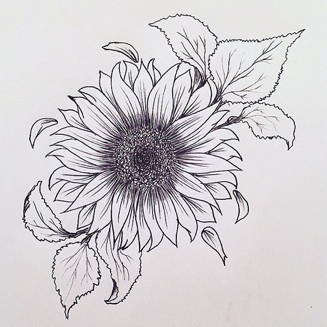 Sun Flower Tattoos Sample
