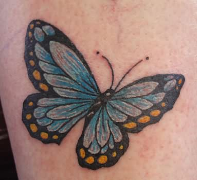nice blue butterfly tattoo. Black Bedroom Furniture Sets. Home Design Ideas