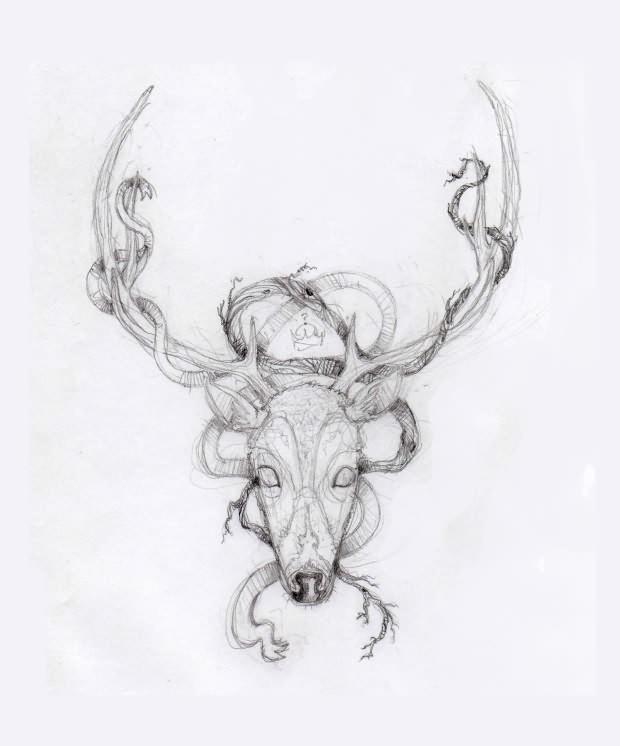 Deer Skull Tattoo Drawings