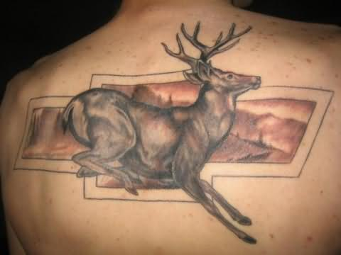 Wild Deer Tattoo