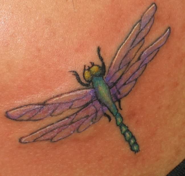 15 Stunning Dragonfly Tattoos Tattoo Me Now