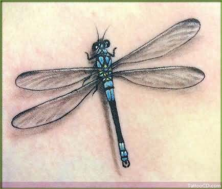 Orignal Dragonfly Tattoo