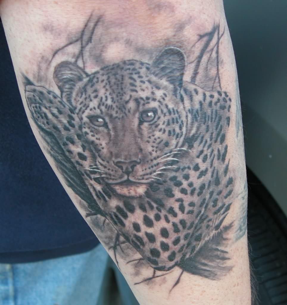 leopard images designs