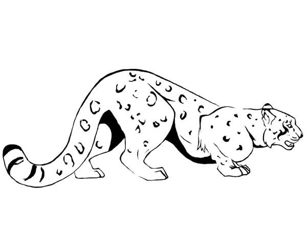 Cartoon snow leopard - photo#23
