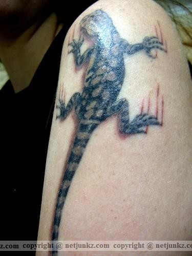 Lizard Paw Scratch Tattoo Similar Posts Panther Paw Scratch Tattoo Design