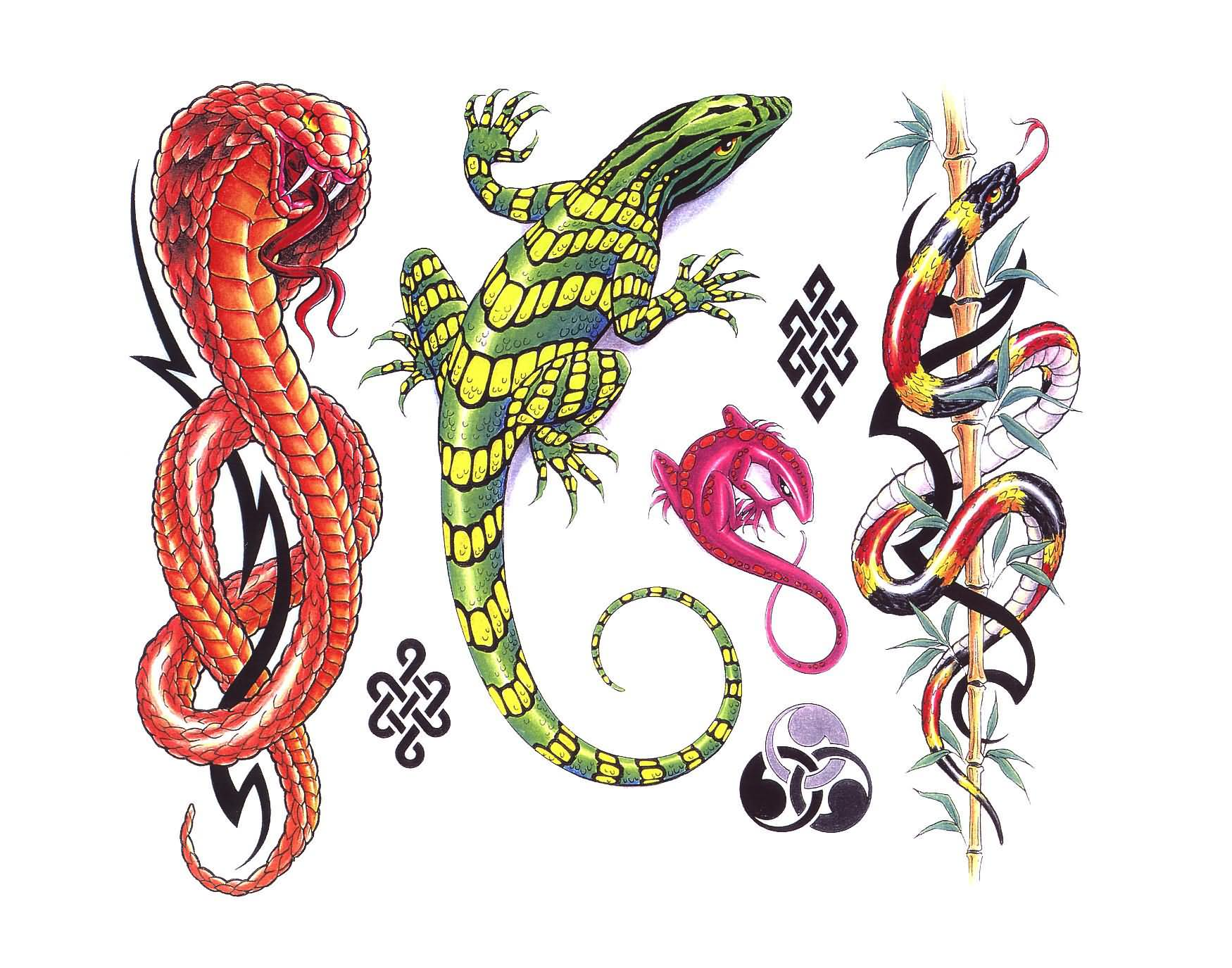 New Designs For Lizard Tattoo