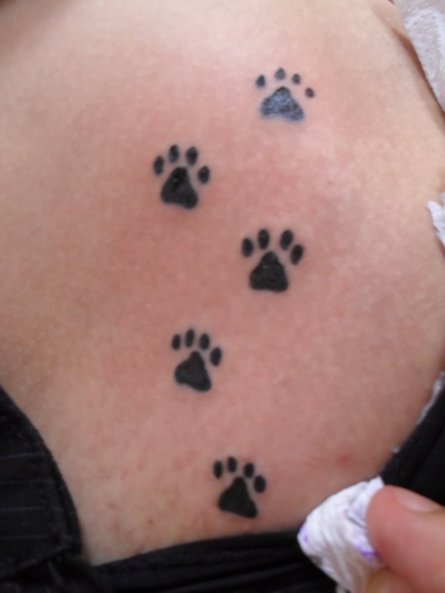 Amazing Small Paw Tattoos