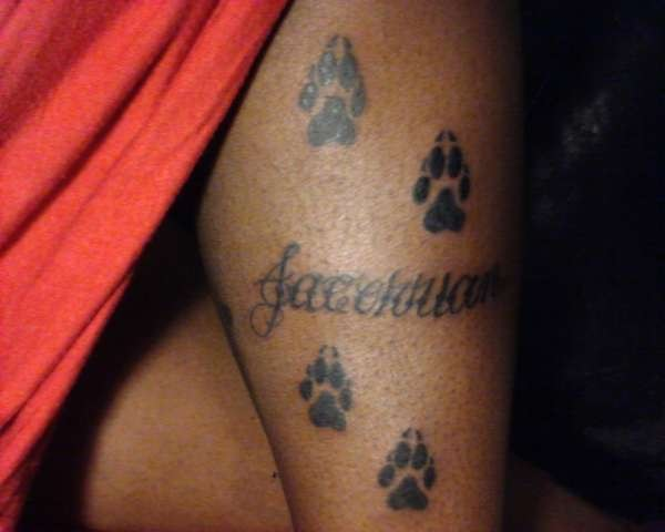 Name And Paw Prints Tattoo  Name With Paw Prints Showing Progressive