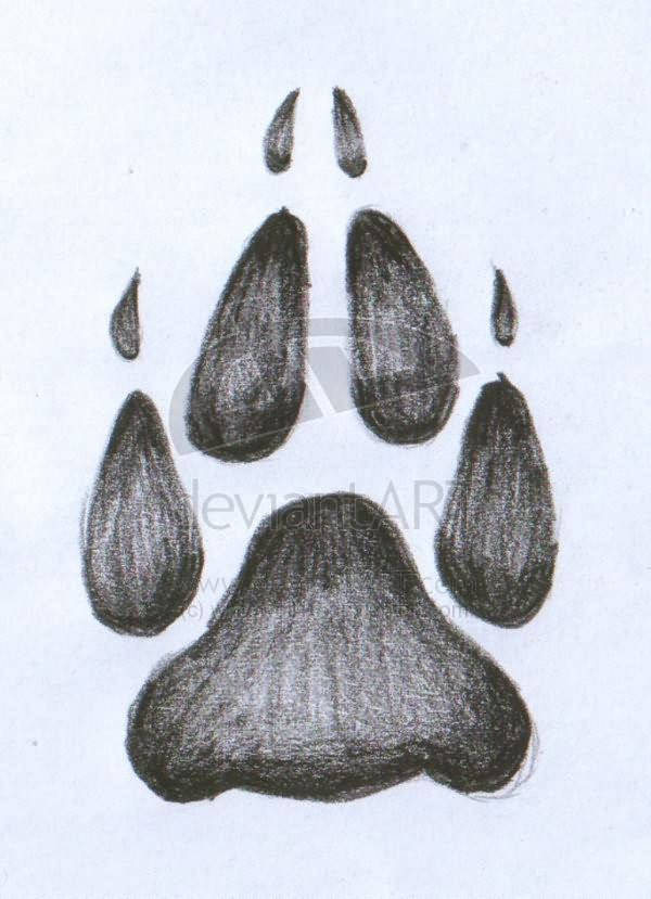 Wolf Paw Tattoo Sketch Native American Wolf Paw