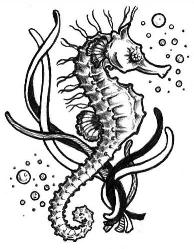 Seahorse Tattoo Images amp Designs