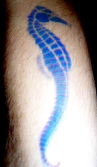 Seahorse tattoo images designs for Blue horseshoe tattoo