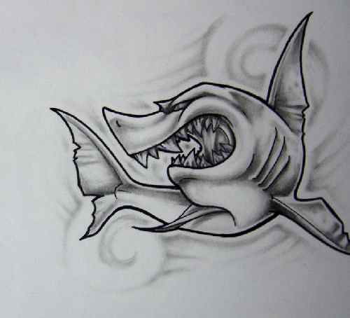 Gallery For gt Shark Tattoo Sketch