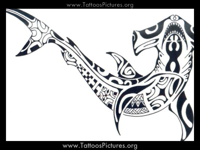 Tribal Shark Tattoo Design By Mindsetteler