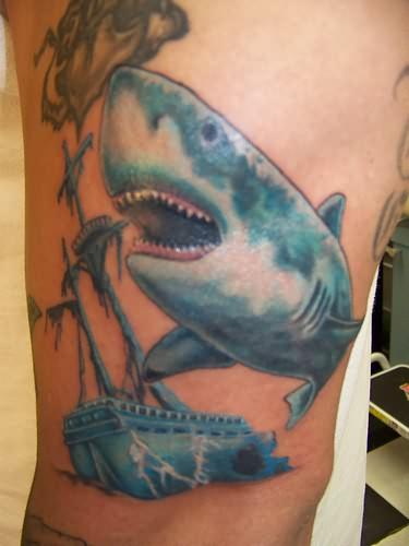 Bull shark tattoos