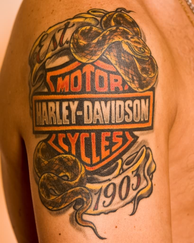 Harley Davidson Red Deer >> Snake Tattoos - Tattoo Me Now