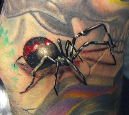 Spider Colourful Tattoo