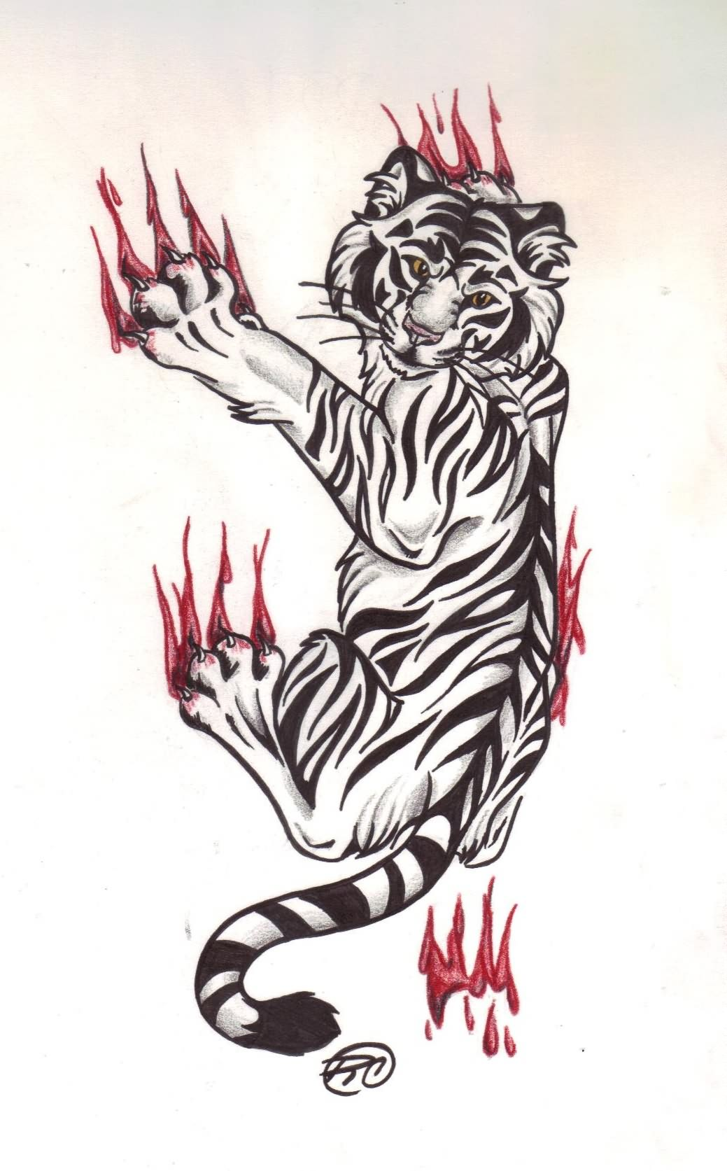 ideas for tiger drawing