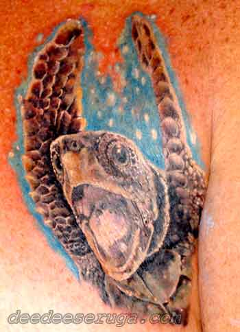 Small Sea Turtle Tattoos