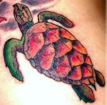 Beautiful Turtle Tattoo For Body